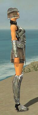 Warrior Istani Armor F gray side.jpg