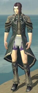 Elementalist Asuran Armor M gray chest feet front.jpg