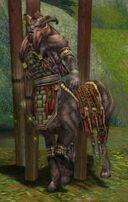 Maguuma Warlock.jpg