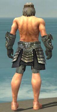 Warrior Elite Templar Armor M gray arms legs back.jpg