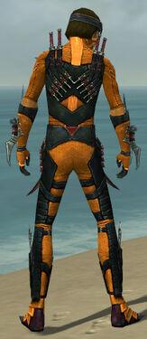 Assassin Elite Canthan Armor M dyed back.jpg