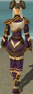 Monk Elite Canthan Armor F dyed back.jpg