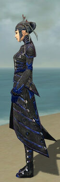 Necromancer Elite Cultist Armor F dyed side.jpg