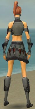 Assassin Elite Canthan Armor F gray back.jpg