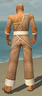 Monk Ascalon Armor M dyed back.jpg