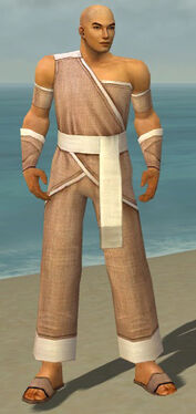 Monk Ascalon Armor M dyed front.jpg