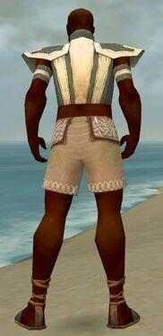 Monk Elite Saintly Armor M gray chest feet back.jpg