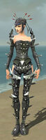 Necromancer Profane Armor F gray front.jpg