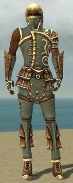 Ranger Shing Jea Armor M gray front.jpg