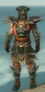 Warrior Luxon Armor M gray front.jpg