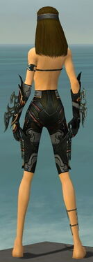 Assassin Elite Kurzick Armor F gray arms legs back.jpg