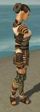 Monk Elite Canthan Armor F gray side.jpg