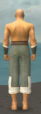 Monk Krytan Armor M gray arms legs back.jpg