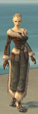 Monk Norn Armor F gray front.jpg