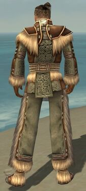 Monk Norn Armor M gray back.jpg