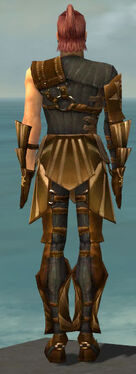 Ranger Sunspear Armor M gray back.jpg
