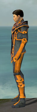 Elementalist Krytan Armor M dyed side.jpg