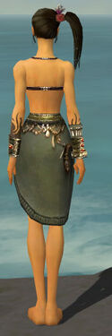 Ritualist Canthan Armor F gray arms legs back.jpg