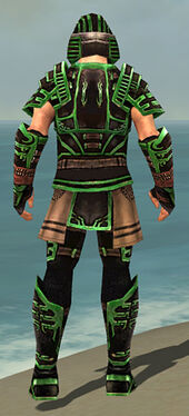 Warrior Ancient Armor M dyed back.jpg