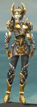 Warrior Templar Armor F dyed front.jpg