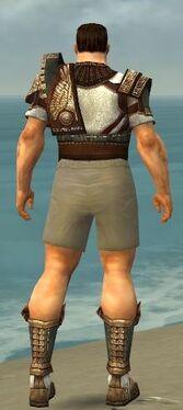 Warrior Vabbian Armor M gray chest feet back.jpg