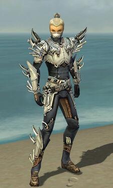 Assassin Asuran Armor M dyed front.jpg