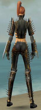 Assassin Exotic Armor F gray back.jpg