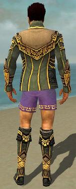 Mesmer Asuran Armor M gray chest feet back.jpg