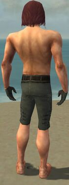 Mesmer Obsidian Armor M gray arms legs back.jpg