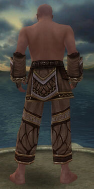 Monk Elite Canthan Armor M gray arms legs back.jpg