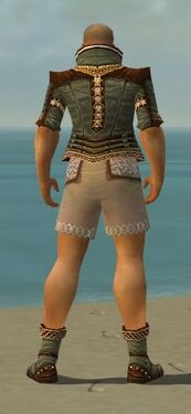 Monk Elite Kurzick Armor M gray chest feet back.jpg