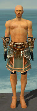 Ritualist Imperial Armor M gray arms legs front.jpg