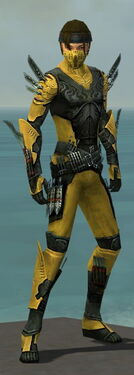 Assassin Imperial Armor M dyed front.jpg
