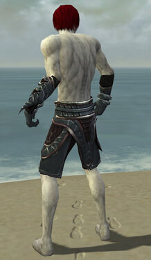Necromancer Asuran Armor M gray arms legs back.jpg