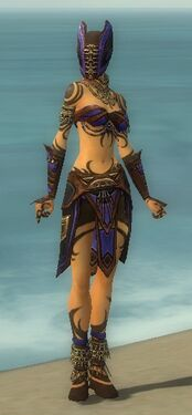 Ritualist Monument Armor F dyed front.jpg