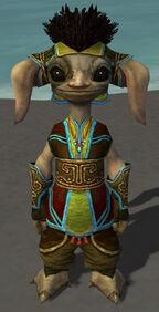 Vekk Armor Brotherhood Front.jpg