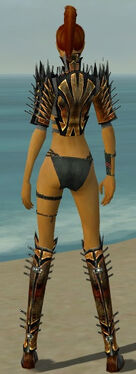 Assassin Elite Exotic Armor F gray chest feet back.jpg