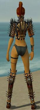 Assassin Elite Exotic Armor F gray chest feet back.jpg