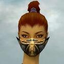 Assassin Elite Exotic Armor F gray head front.jpg
