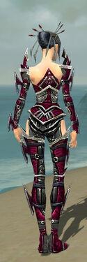 Necromancer Elite Profane Armor F dyed back.jpg
