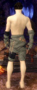 Ritualist Ancient Armor M gray arms legs back.jpg