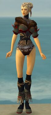 Ritualist Norn Armor F gray chest feet front.jpg