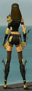 Assassin Elite Luxon Armor F dyed back.jpg