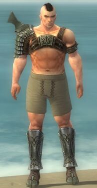Warrior Elite Gladiator Armor M gray chest feet front.jpg
