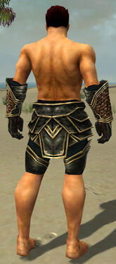 Warrior Kurzick Armor M gray arms legs back.jpg