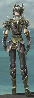 Warrior Templar Armor F gray back.jpg