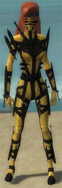 Assassin Obsidian Armor F dyed front.jpg