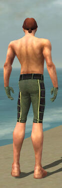 Mesmer Canthan Armor M gray arms legs back.jpg