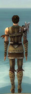 Ranger Elite Studded Leather Armor M dyed back.jpg