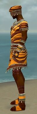 Ritualist Exotic Armor M dyed side.jpg